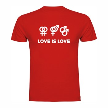 T shirt Love is Love